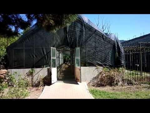 中科院植物园 Chinese Academy of Sciences Botanical Garden 8