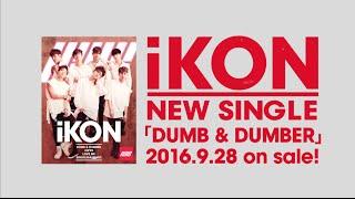 iKON - #WYD M/V Japanese Short Ver. (from Single「DUMB & DUMBER」) thumbnail