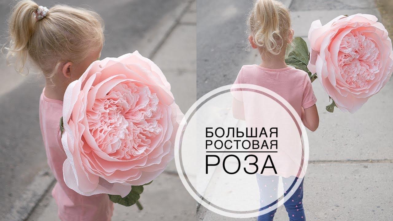 Купить розы в минске дешево. 1 место букет из 101 розы и 100 рублей. Красные и белые розы производства украина 60 см от 1,69 руб!!!