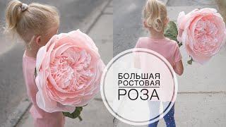 Большая пионовидная роза из бумаги / 1 рулон бумаги /  DIY Tsvoric