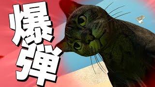 【GMOD】猫になっちゃった!?-爆弾ボール-やってみた