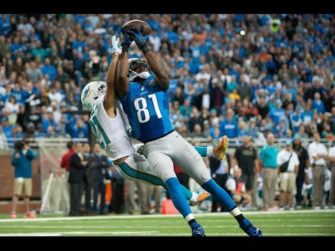 Calvin Johnson 2014-2015 Highlights HD