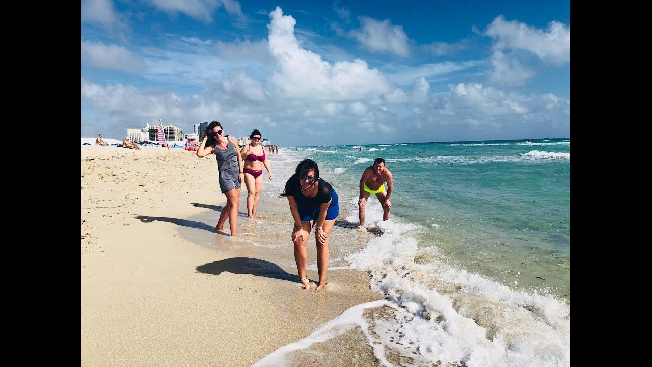 Memories From U S A 2018 Miami Vero Beach Seaworld Orlando Brevard Zoo Florida