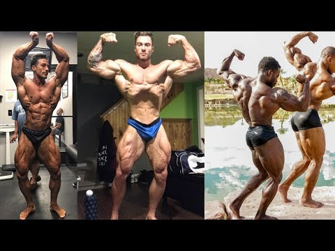 Mr Olympia Classic Physique Qualified 2017 - Fitness & Bodybuilding Motivation