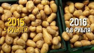 Цена салата