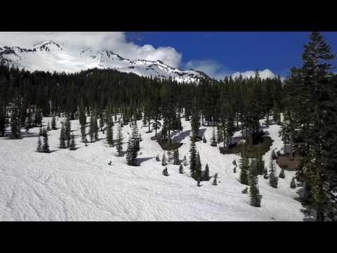 Shasta SVHC video