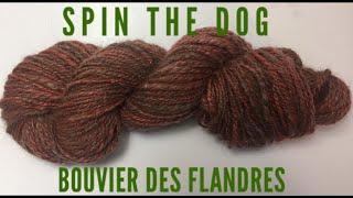 Spin the dog : Bouvier des Flandres (dog hair) blend