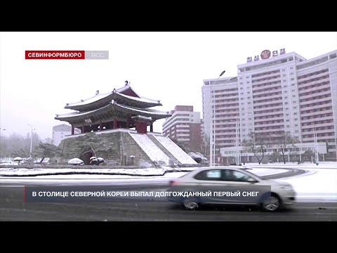 НТС Севастополь: «Хорошие новости» от 14 декабря 2020 года