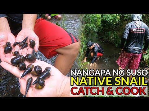 ep64---pangangapa-ng-suso-at-kuhol-:-ginataan-sa-pako-(hunt-&-cook)-san-pablo-city,-laguna