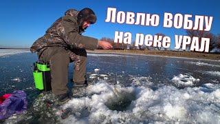 Зимняя рыбалка Первая вылазка ЛОВЛЮ ВОБЛУ НА РЕКЕ УРАЛ