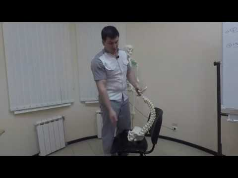 Шейный хондроз и его эффективное лечение в домашних условиях