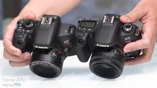 Canon SL2 vs T7i vs 77D (200D vs 800D vs 77D) Which 📷 is best?