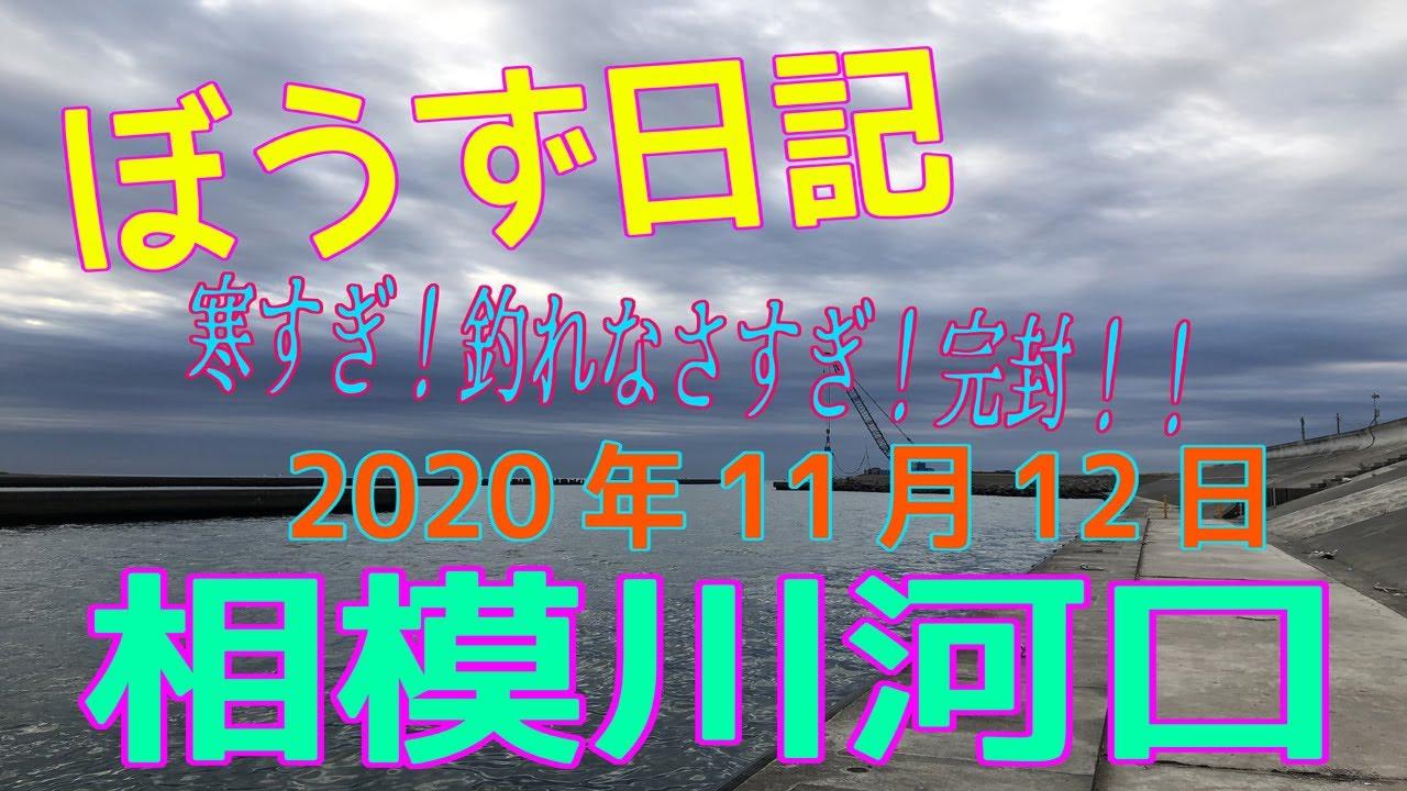 ぼうず日記 in 相模川河口(2020年11月12日)