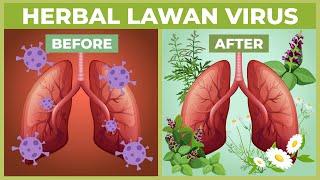 10 Macam Herbal Ini Ternyata Berpotensi Melawan Virus Corona!