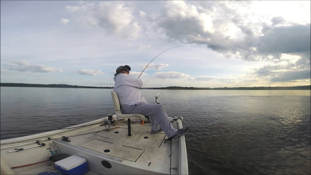Bear Stripers spring stripers in the lower connecticut river with carl lovisolo, 6/7/19