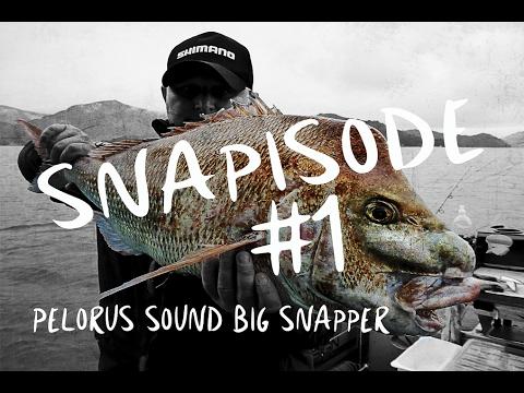 SNAPISODE #1 // Kenepuru Big Snapper