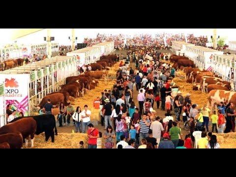 Increible Expo Ganadera