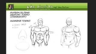 Superhjältens anatomi: torso överkropp