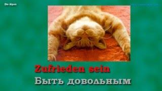 Урок 1/7. Немецкий язык с нуля. Местоимения. Спряжение глагола sein. Шипилова.