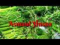 Asmaul Husna - Plus Lirik Sehingga Mudah Dihafalkan
