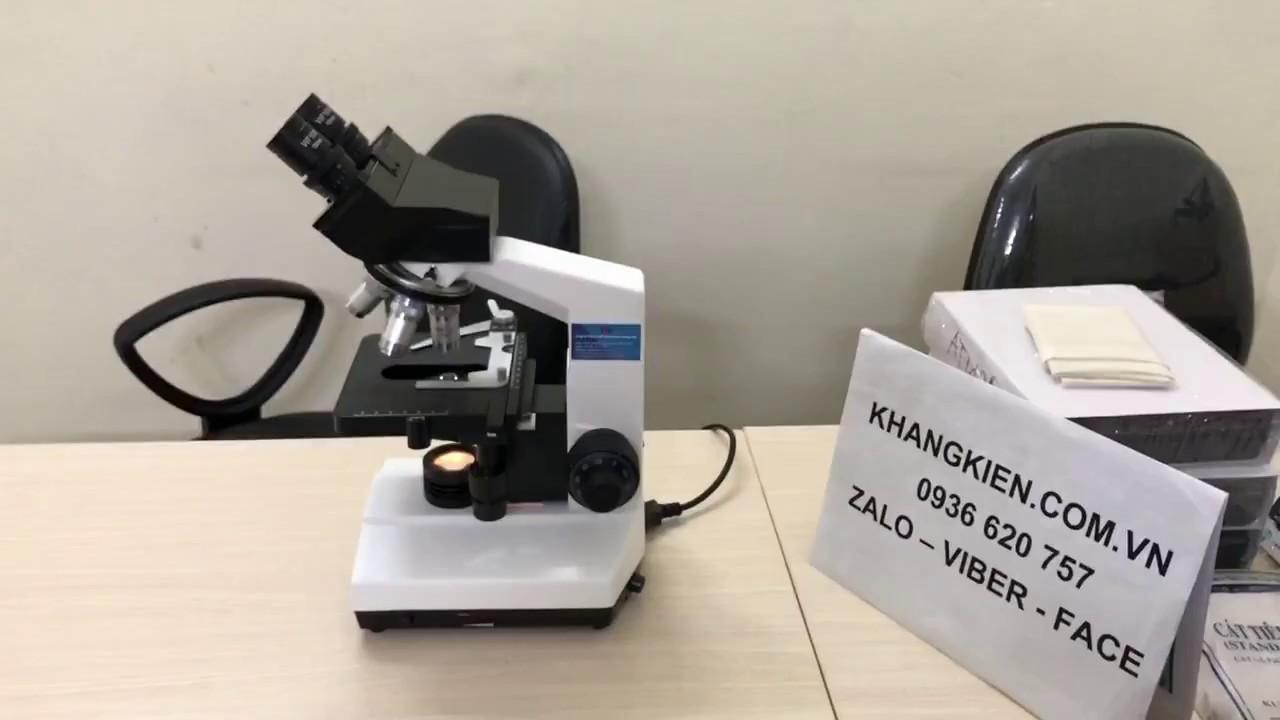 Kính hiển vi 2 mắt | Kính hiển vi quang học giá rẻ | Kính hiển vi Trung Quốc