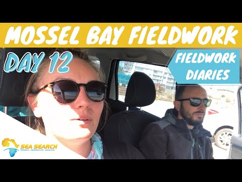 **Field Work Diaries** Mossel Bay Day 12: Life and times of a PhD student