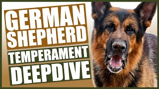 GERMAN SHEPHERD TEMPERAMENT DEEPDIVE