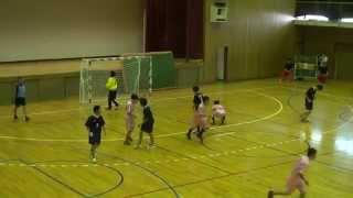 2015年5月17日群馬県高校総体ハンドボール大会3位決定戦2