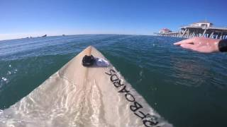 Surfing POV (Dove saved) | September 26th | 2016 (RAW FOOTAGE)