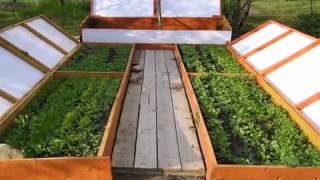 Н.И. Курдюмов - Уроки садоводства. Часть 1(, 2011-11-18T14:27:41.000Z)