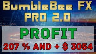 Arbitrage Forex Broker Think Markets: Profit + 207% and  + 3054 USD | Forex Live Trading 19.10.2018