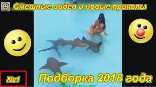 Смешные видео и новые приколы №1 ( Подборка 2018 года)