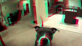 Deuce With Water Squirt 3d.mov