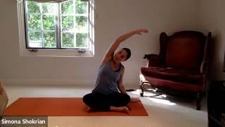 Beginner/Intermediate Yoga - Session 16