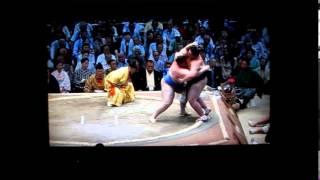 碧山vs逸ノ城 平成27年大相撲七月場所 Sumo Aoiyama vs Ichinojo.