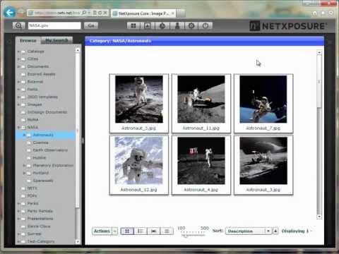Bulk Editing Metadata In A Digital Asset Management System