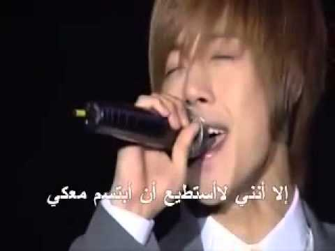 Because Im Stupid (Arabic Sub) قبل الزهور. اغنية هاني
