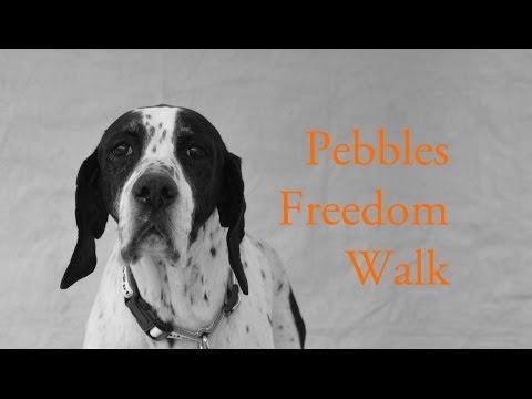 Pebbles Freedom Walk