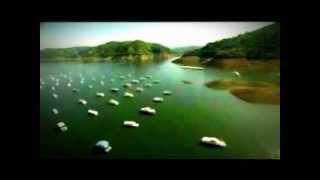 Los Pasos Perdidos de Alejo Carpentier, en la voz de Gualdo Hidalgo (Fragmento)
