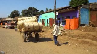 Road Trip to Negele, Ethiopia III