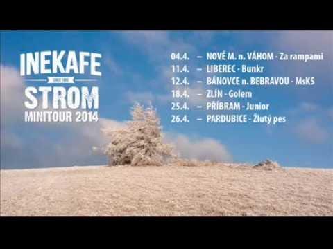 INEKAFE - Strom /Nevhodný typ 2015/