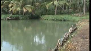 Kerala Research Fish Farm (VinSaj Ltd)
