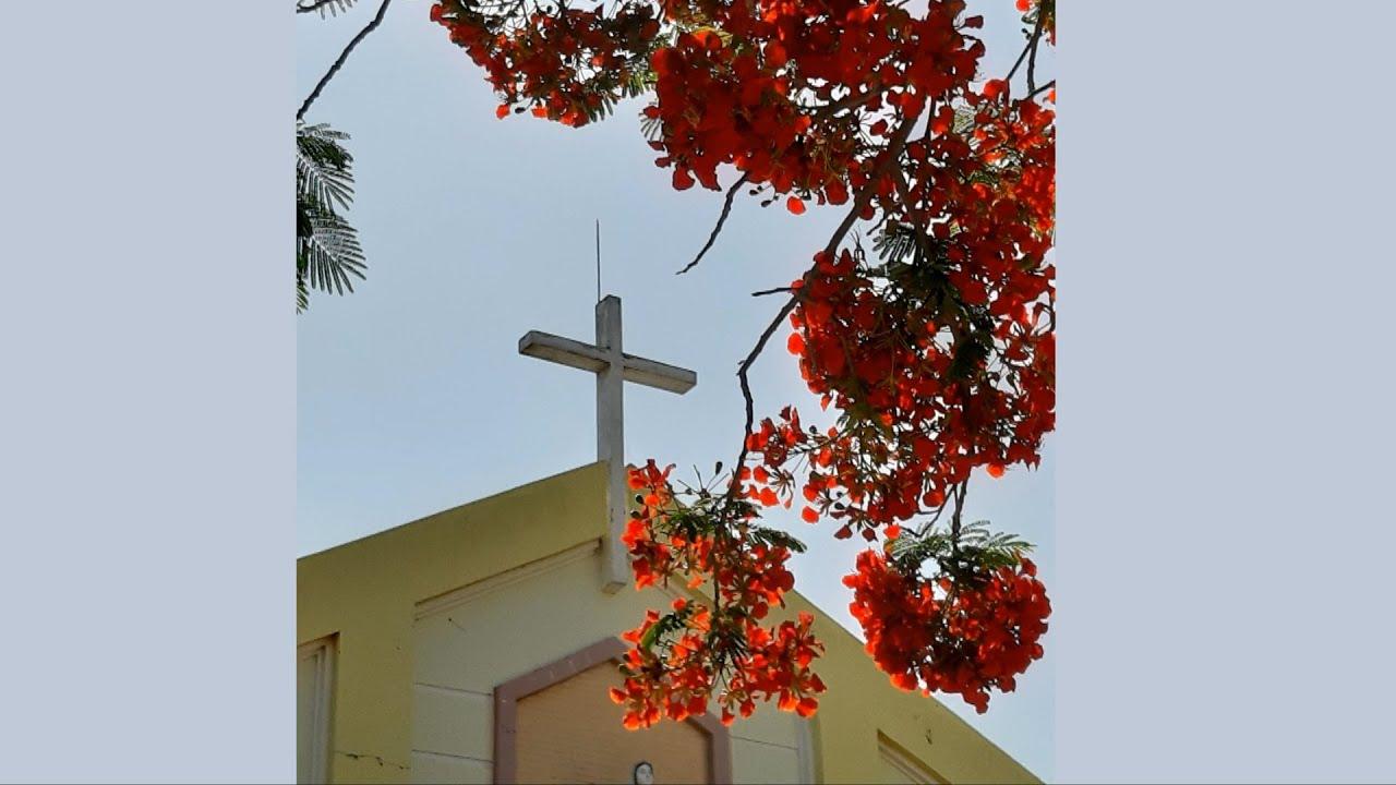 Nét đẹp Nhà thờ Gò Da (Đồng Tháp)