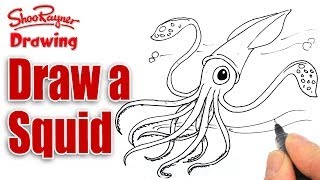 How to draw a Squid