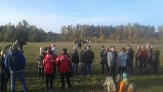 Gonitwa lisa Rokosowo 24.10.2015