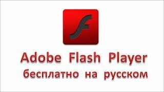 Adobe Flash Player бесплатно на русском
