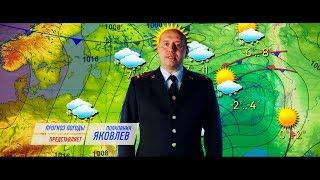 Прогноз погоды от Володи.