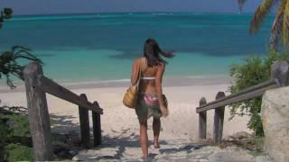 Aruba Tauchen Sie ein