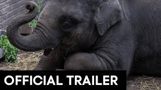 ZOO OFFICIAL MOVIE TRAILER [HD]