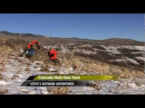 SOA-10-0005  Colorado Trophy Mule Deer Hunt